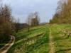 Schöne Wiesenwege im Zellertal