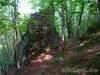 Ruine Ringelstein