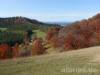 Blick zum Hundsrücken und zum Schwarzwald