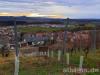 Weinberg am Grafenberg mit Blick nach Südwest