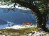 Wasserfels in Krebsstein