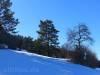 Naturschutzgebiet am Blasenberg