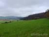 Wiesen und Äcker zwischen Gächingen und Upfingen