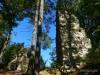In der Ruine Hinter-Lichtenstein