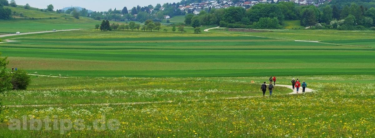 Wandergruppe vor Genkingen und dem Roßberg