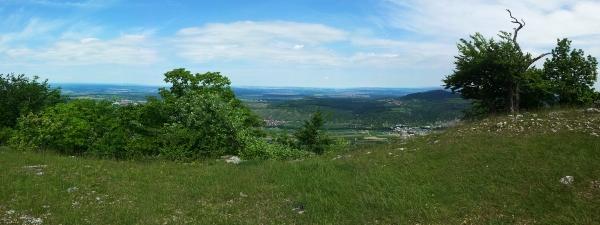 Panoramablick vom Roßfeld oberhalb Glems