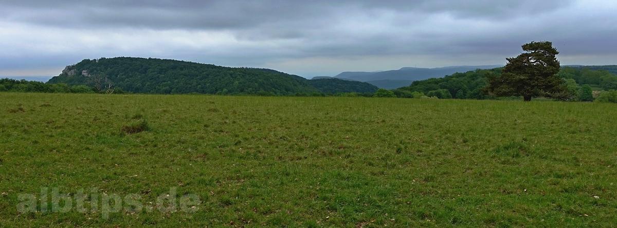 Panoramablick vom höchsten Punkt des NSG Won
