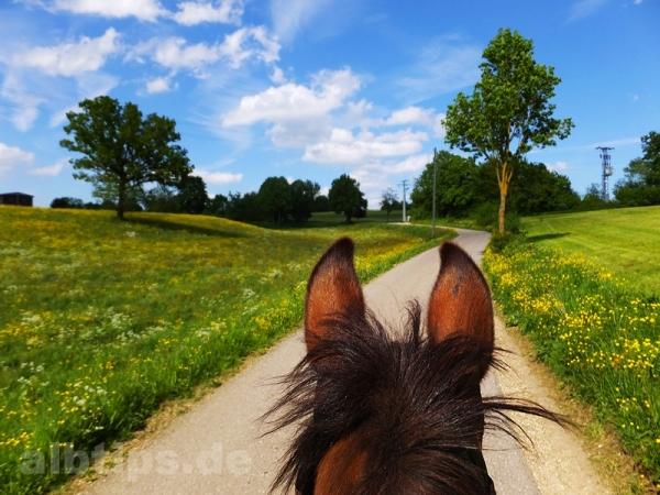 Wanderritt in den Frühling auf der Schwäbischen Alb