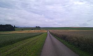 Hochfläche bei Strohweiler