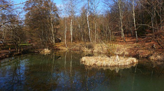 Von Stockach durchs Ehrenbachtal